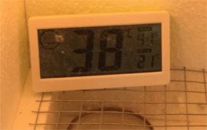 Die Temperatur stimmt